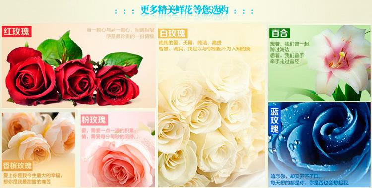 鲜花快递(www.viphua.com)鲜花款式图