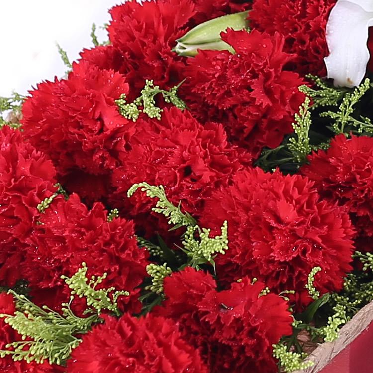 甘露—快送鲜花网|圣诞鲜花礼盒|玫瑰礼盒|平安夜鲜花订购|情人节鲜花预定|鲜花快捷|圣诞节送花