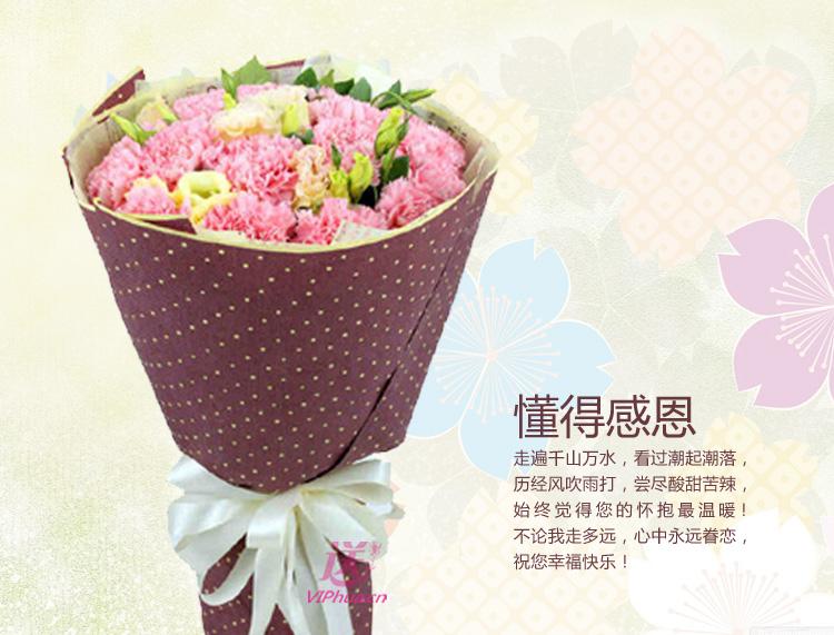康永伴—快送鲜花网|母亲节花束|邮政订花|异地送鲜花|送康乃馨