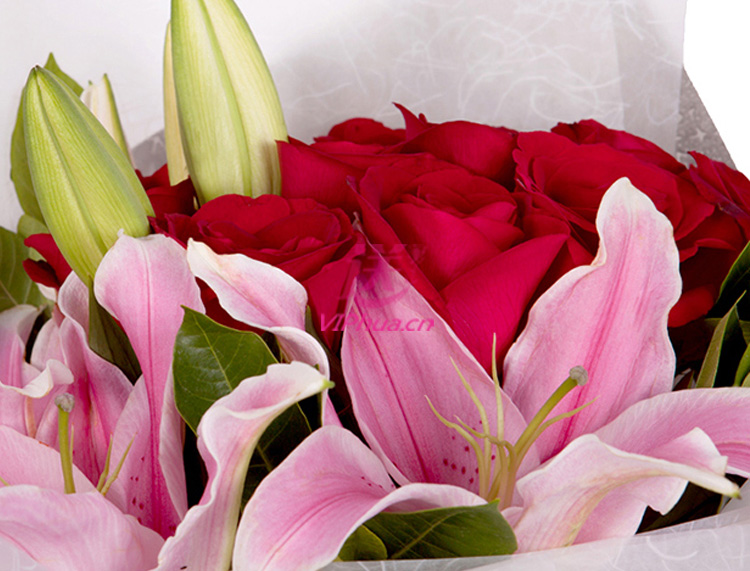 焕发沁香—快送鲜花网|情人节鲜花速递|朋友异地订花|同城快递鲜花|网上订鲜花|节日鲜花