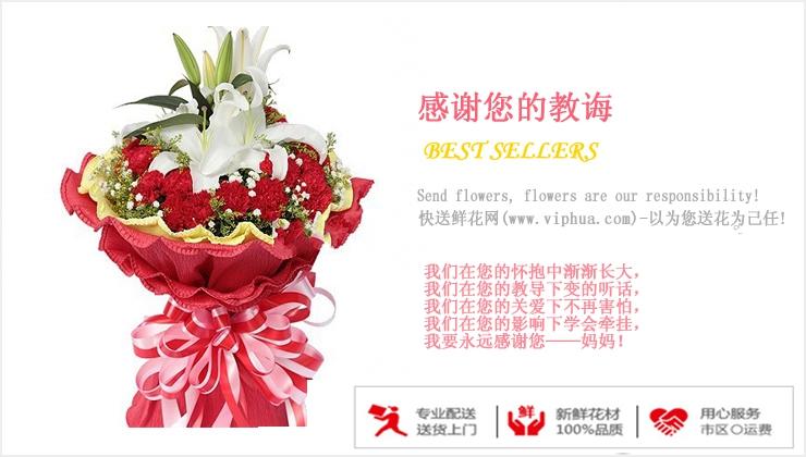 感谢您的教诲—快送鲜花网 母亲节订花 送鲜花 鲜花预定 网上订花哪个网站好