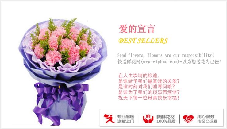爱的宣言—快送鲜花网 康乃馨花束 教师节定花 异地送鲜花 网上买花哪个网站好