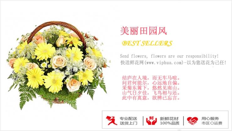 美丽田园风—快送鲜花网|购买花篮|鲜花花篮|送花篮|订购花篮|异地送花|教师节花篮