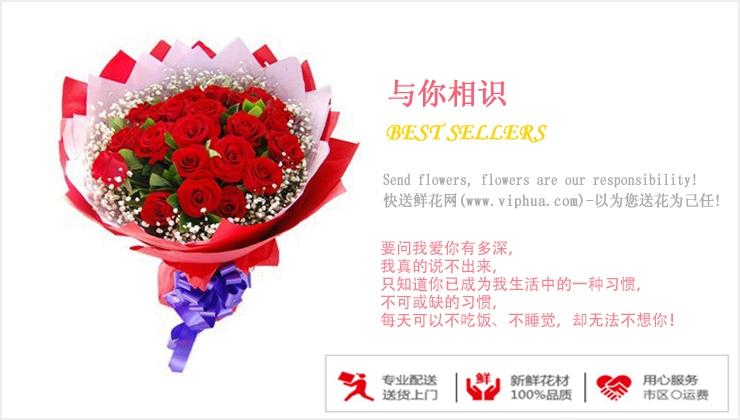 与你相识—快送鲜花网|情人节鲜花速递|异地订花|同城快递鲜花|网上订鲜花|节日鲜花